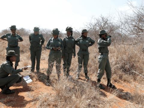 https://citizentv.s3.amazonaws.com/wp-content/uploads/2020/08/Team-Lioness-an-all-female-Kenyan-ranger-unit-480x360.png