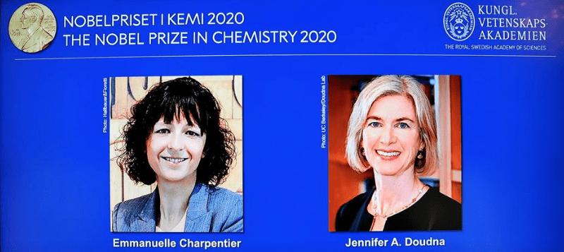 Creators of gene 'scissors' clinch Nobel as women sweep chemistry